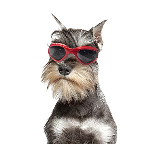 Petleso Pet Goggles Stylish Dog Sunglasses for UV...