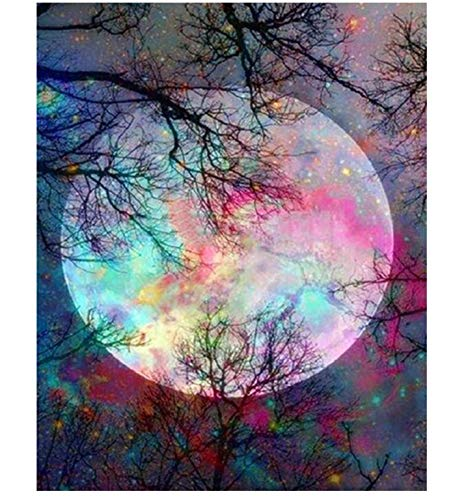 CANDYL DIY Acrylic Painting Paint by Number Moon Kit for Kids Adults Students Beginner Diy Canvas Painting by Numbers Acrylic Oil Painting Arts Craft for Home Wall Decoration Bright Moon 16x20 Inch