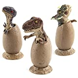 Jollymap 3pcs Dinosaur Era Predator Velociraptor in Egg Dinosaur Figurine Hatchling Collectible Sculpture