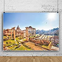 Qinunipoto 背景布 撮影用 布 背景紙 写真背景布 撮影背景 背景シート生活写真 屋外の風景 ローマ時代の遺跡 ヨーロッパの建築 誕生日 小道具 写真撮影用 スクリーン 背景ポスター ビニール 2.1m x 1.5m