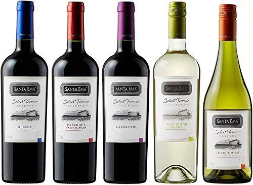 金賞受賞入り! 世界で高評価&メダル受賞ワイナリーのチリ赤&白ワイン至極の飲み比べ5本セット(赤750mlx3、白750mlx2) [チリ/Amazon.co.jp限定/Winery Direct]