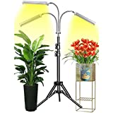 Plant Grow Light with Stand, Updated 150W Full Spectrum for Indoor Plant with Tripod, Plant Floor Growing...