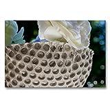 CALVENDO Premium Textil-Leinwand 90 x 60 cm Quer-Format Schale im Lochdesign, Leinwanddruck von Heike Hultsch
