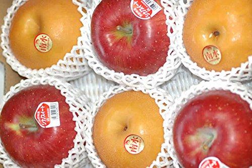 長野産 南水梨 シナノスイート 2キロ 贈答用 秀品 大玉5〜6個入 梨 リンゴ りんご 林檎 南水 ギフト