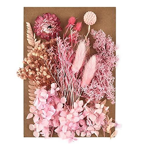 Kaxceay DIY Getrocknete Blume für Harzform, die echte Blume für Harz Füllungen Nail Art Home Handwerk Harz Casting Formwerkzeug (Color : 07)