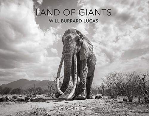Burrard-Lucas, W: Land of Giants
