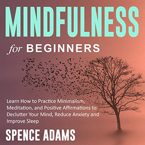 Mindfulness for Beginners: Learn How to Practice Minimalism, Meditation, and Positive Affirmations to Declutter Your Mind, Reduce Anxiety and Improve Sleep  By  cover art