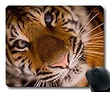 Yanteng Alfombrillas de ráton Animales Divertidas, Gato Animal de áfrica, Tigre Que Vuela Alfombrilla de Raton