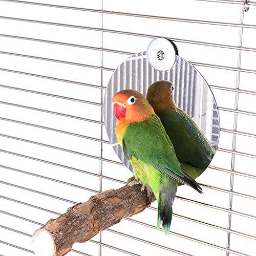 WAZA Spiegel mit Perken für Vögel, Naturholzständer, Vogelspielzeug, Zubehör für Käfig, für Wellensittiche, Wellensittiche, Agapornis