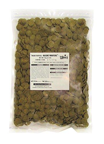 Hikari Algae Wafers for Pets, 2.2-Pound