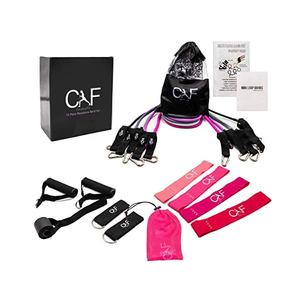 CandourFit 15 Piece Resistance Bands Set for Women with Booty Bands | Including Handles,...