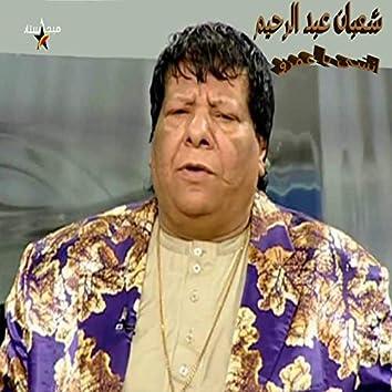 Ensa Ya Amro