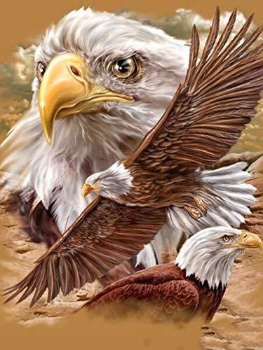 Tegen elkaar schilderen op nummer, adelaar doe-het-zelf schilderij voor beginners en volwassenen, bevat acrylverf 16 x 20 inch