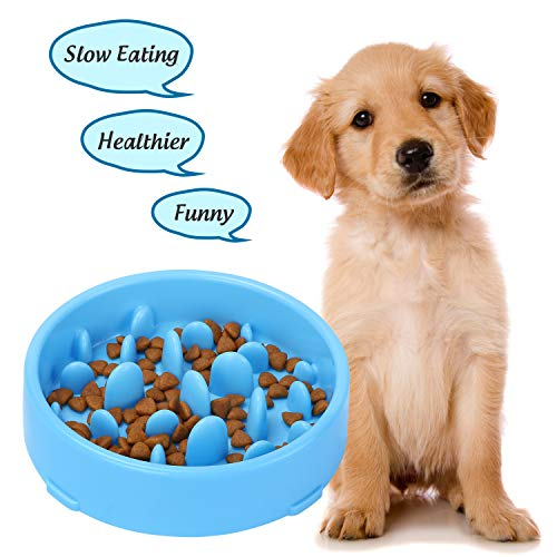 XZQTIVE Slow Feeder Bowl for Dogs