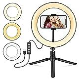 Foxin - Anillo de luz con trípode y soporte para teléfono (10 pulgadas) para transmisión en vivo/maquillaje, mini cámara LED de escritorio para YouTube Video, compatible con iPhone/Android