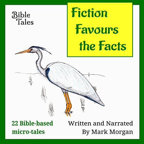 Fiction Favours the Facts: 22 Bible-based Micro-tales audiobook cover art