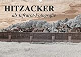 Hitzacker als Infrarot-Fotografie (Wandkalender 2021 DIN A3 quer)