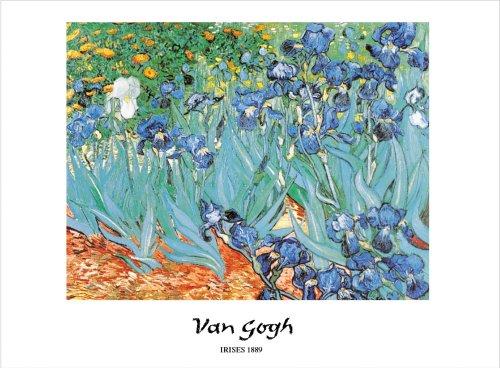 Van Gogh lirios diseño de 60 x 80 cm