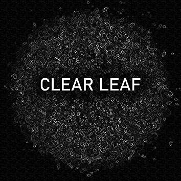 Clear Leaf