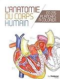 L'anatomie du corps humain en 25 planches à colorier