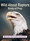 Wild About - Raptors - Birds of Prey