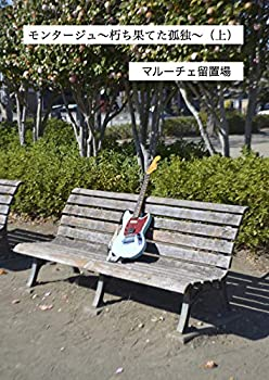 モンタージュ〜朽ち果てた孤独〜(上)