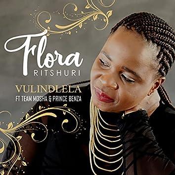 Vulindlela (feat. Team Mosha and Prince Benza)