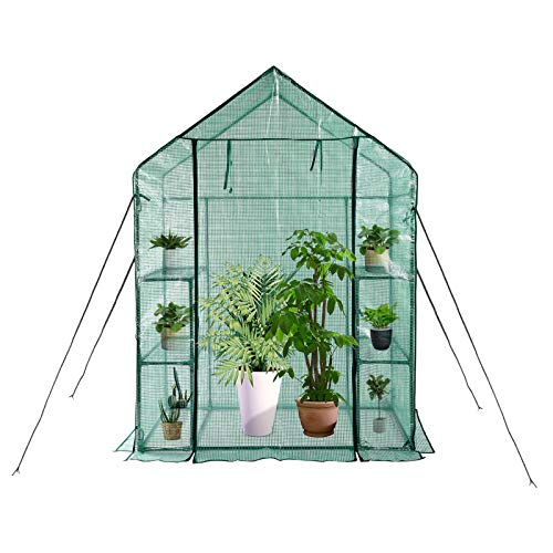 """KOKSRY Greenhouse,Indoor and Outdoor Greenhouse,Window and Anchors Include,Grow Plants Seedlings Herbs or Flowers(56""""×30""""×76"""")"""