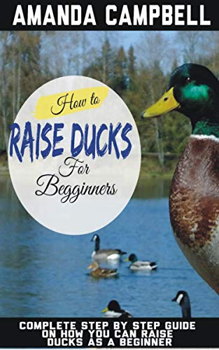 HOW TO RAISE DUCKS FOR BEGINNERS: The Complete Step by Step Guide On How You Can Raise Ducks as A Beginner (Beginner's Guide to Raising Backyard ducks) by [Amanda  Campbell]