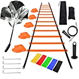 Litviz Agility Ladder Speed Training Equipment,Includes 12 Rung Agility Ladder, 10 Disc Cones,Jump Rope, Resistance Bands, Running Parachute,Holder,-for Football, Basketball, Hockey Training Athletes