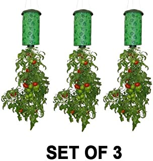 Topsy Turvy Upside-Down Tomato Planter (3-Pack)