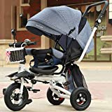 GUO@ Portátil Plegable para niños Triciclo reclinable Asiento Giratorio Bebé Infantil Cochecito 1-3-5 años de antigüedad Titanio Rueda vacía