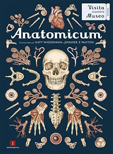 Anatomicum: 29 (El chico amarillo)