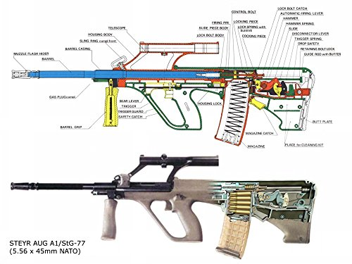 The Museum Outlet Posterdruck Steyr Aug, A3