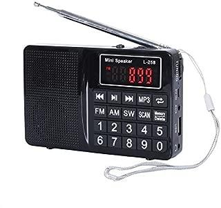 easycare Portable Mini AM FM Radio Clear Speaker Music Player (L-258 Black)