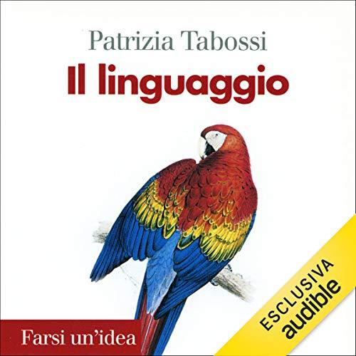 Il linguaggio copertina