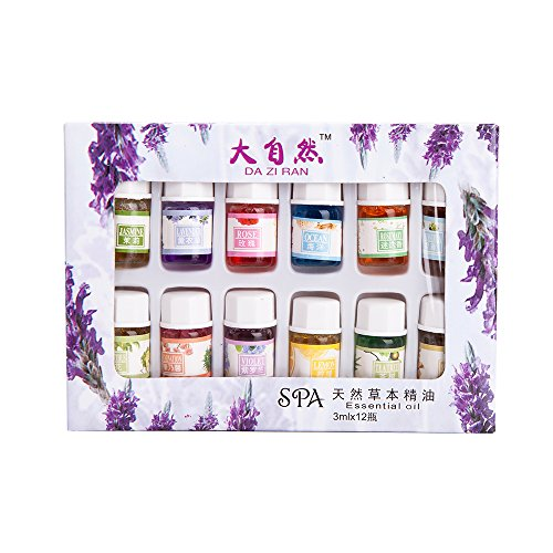 THY COLLECTIBLES A Pack of 12 Fragrance Oil Aromatic Perfume Oils in 12 Various Scents 3ML Each Bottle