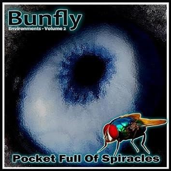 Environments, Vol.2:  Pocket Full of Spiracles