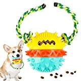 【2021 Upgraded】 Dog Squeaky Toys Almost Indestructible Tough Durable Toy Dog Toothbrush Dog Treat Toy Ball Angry Bob Chewer for Aggressive Dog Small Medium Large Dogs