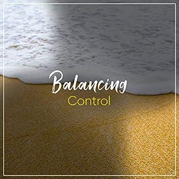 2019 Balancing Control