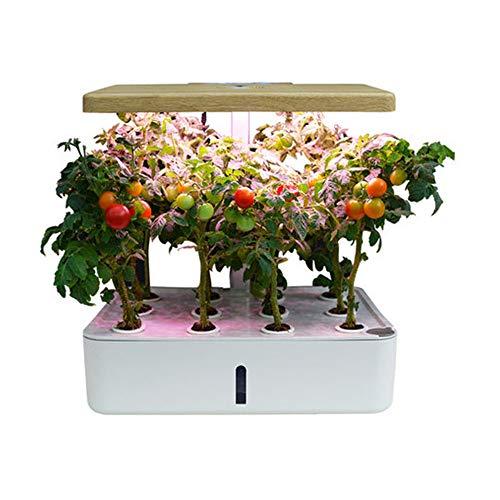 Système de culture hydroponique, 12 dosettes - Kit de jardin d'herbes intérieures avec LED élèvent la lumière, grandissent intelligemment pour les plantes, pour la décoration de bricolage de jardinage