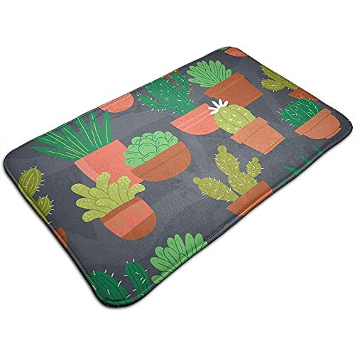 Duang Vloermat Cactus Bloempot Antislip Entree Tapijt Deurmat Voordeur Binnen Vloer Binnenbad Matten 40X60cm Buiten