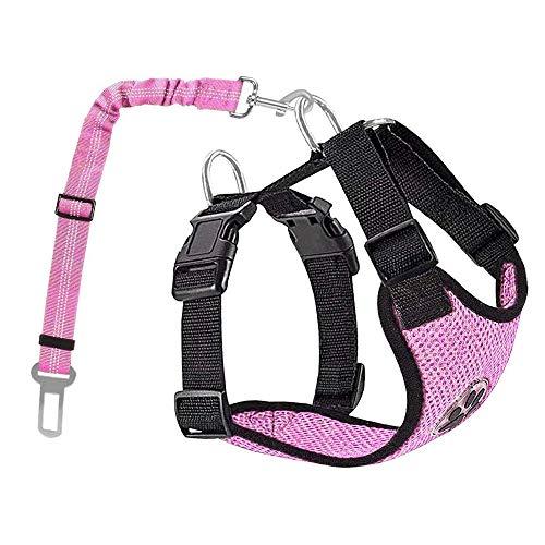 Nasjac Hund Auto Geschirr Sicherheitsgurt-Set, Pet Vest Harness mit Sicherheitsgurt, atmungsaktives Material und Verstellbarer elastischer Gurt für Hunde, die im Freien Laufen (Rosa Mesh, M)