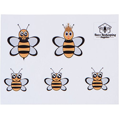 Honey Bee Family Car Stickers - Full Color - Includes Queen Bee, Drone Bee and Baby Honeybee Vinyl Decals - Ideal for Beekeepers