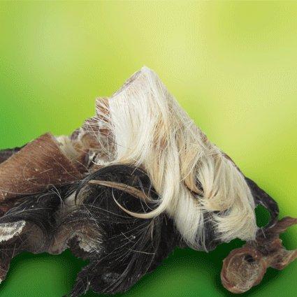 Original-Leckerlies: Rinderkopfhaut mit Fell, 1 kg Kauartikel, Kausnack ohne Zusätze, Naturprodukt für Hunde, Fettarm, barfen