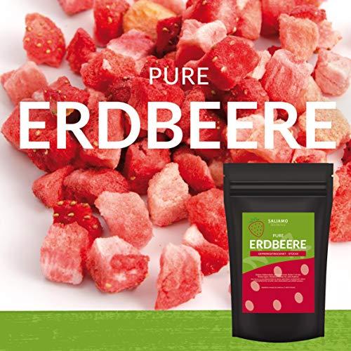 Erdbeeren gefriergetrocknet Stücke Pure Frucht, wieder verschließbar, ohne Zusätze, sehr intensiver Geschmack, besonders knusprig Ideal zum naschen, für Müsli, Smoothie, als Snack (100)