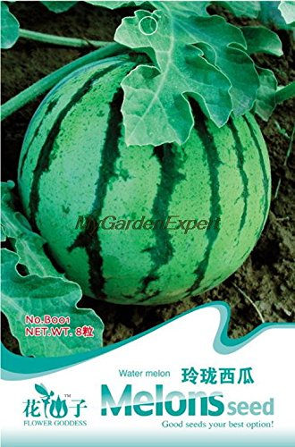 Vente Hot Graines de pastèque, fruits Graines, melon d'eau Graines, Bonsai Plante en pot jardin bricolage Livraison gratuite