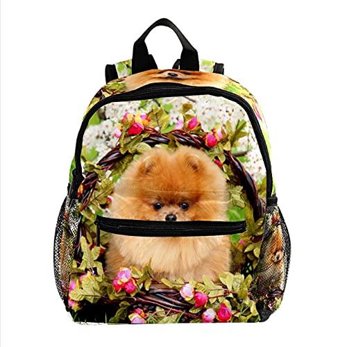 XiangHeFu Sac à dos de voyage pour sac à dos d'école pour filles, sac de randonnée en plein air chien-parc-mignon-beau-panier Sac à dos imprimé