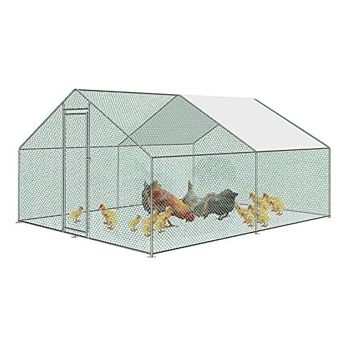 Froadp -   Hühnerkäfig