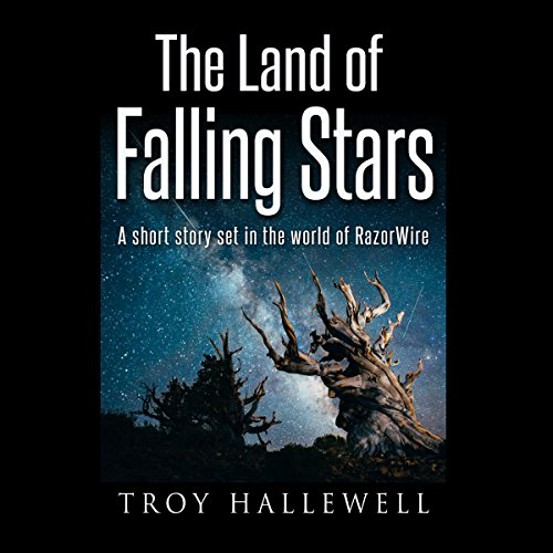 Couverture de The Land of Falling Stars